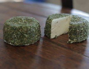BoatShed Cheese - Oasis